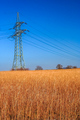 Electric pole in the countryside