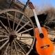 Resonator Guitar Country Pack