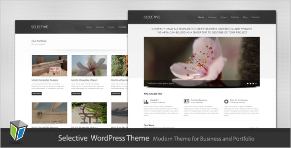 Selective - Business and Portfolio WordPress Theme