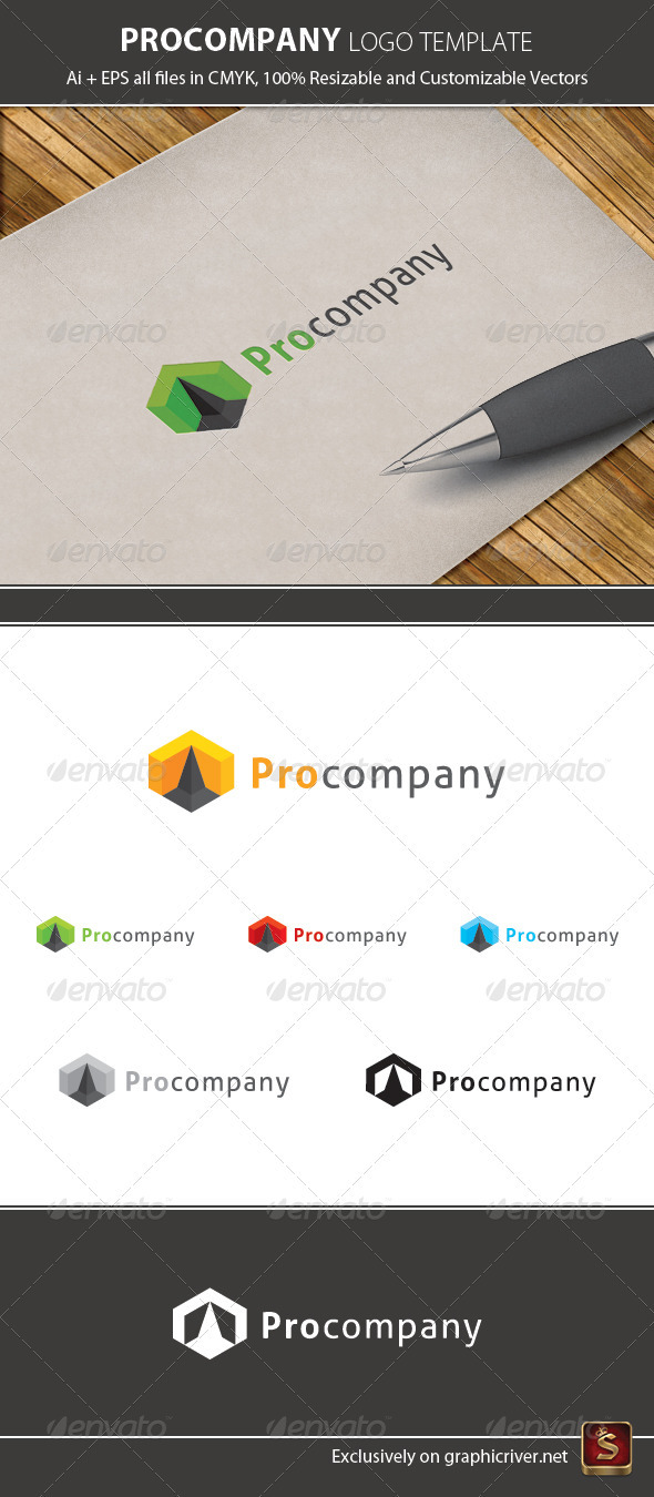 Pro Company Logo Template - Vector Abstract