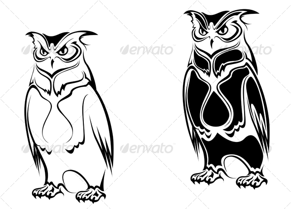 Isolated owl - Animals Characters