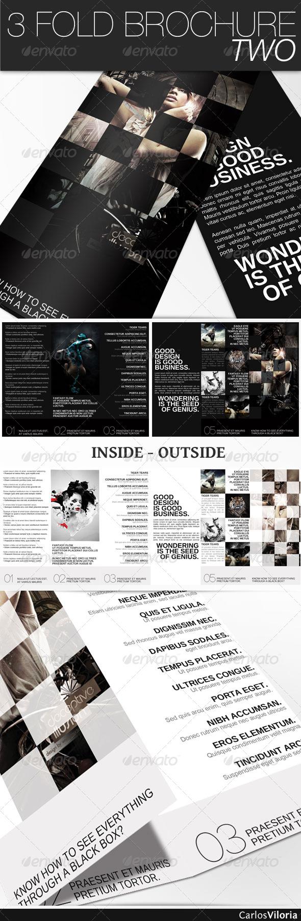 GraphicRiver 3 Fold Brochure II 231502