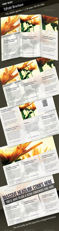 GraphicRiver Tri Fold Brochure V4 233229
