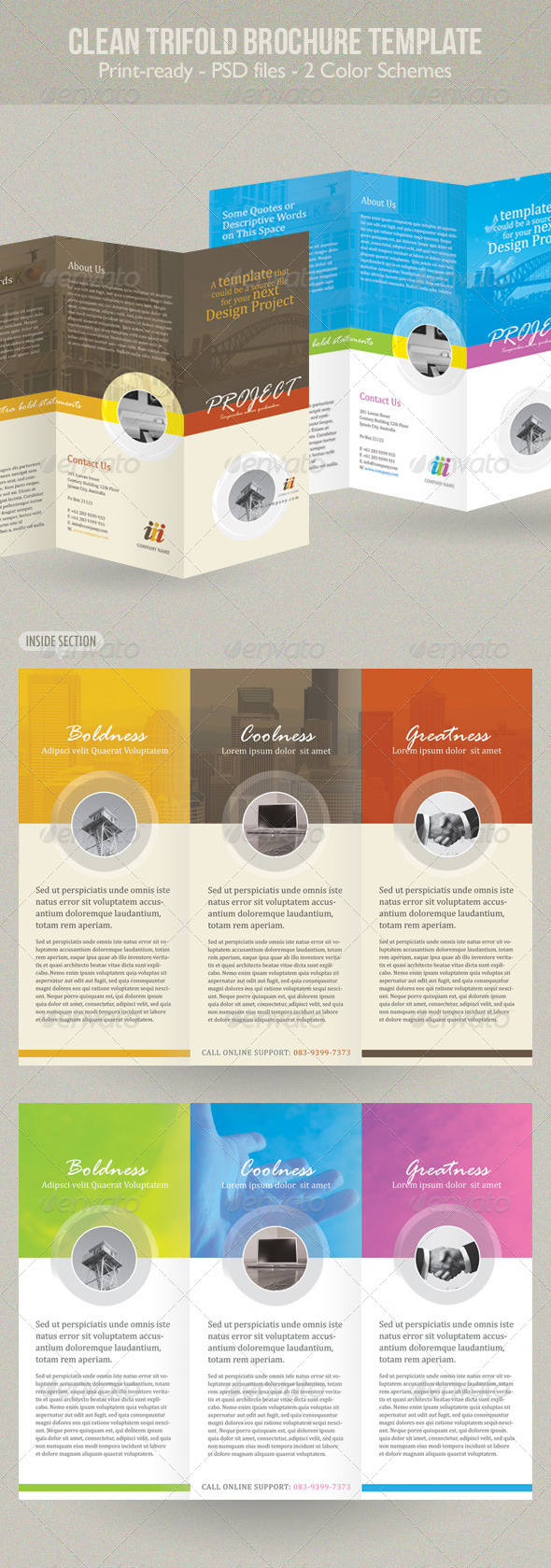 GraphicRiver Clean Trifold Brochure Template 234251