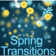 Spring Flowers - VideoHive Item for Sale