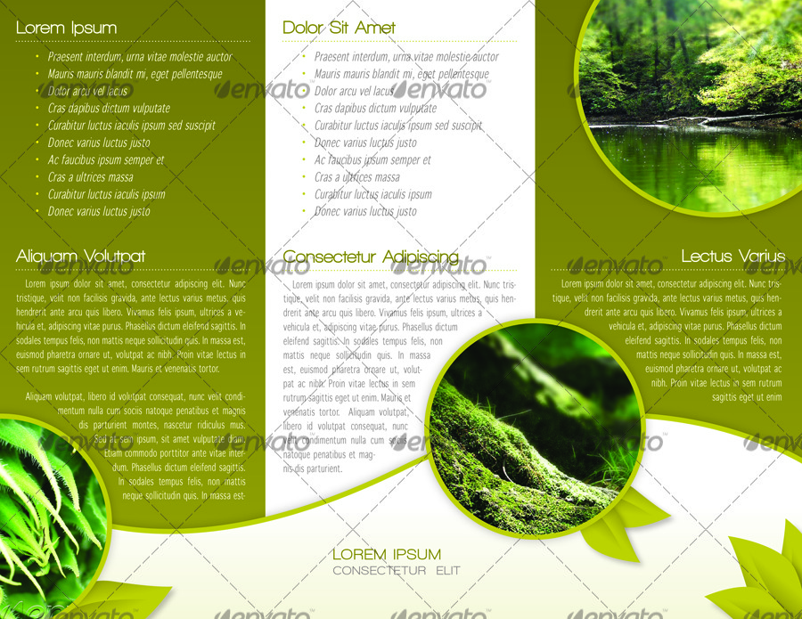 Green trifold brochure indesign template by alvarocker for Brochure templates envato