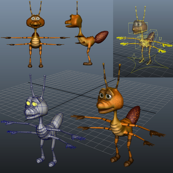 Ant Model  - 3DOcean Item for Sale