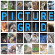 Picture Grid application - ActiveDen Item for Sale