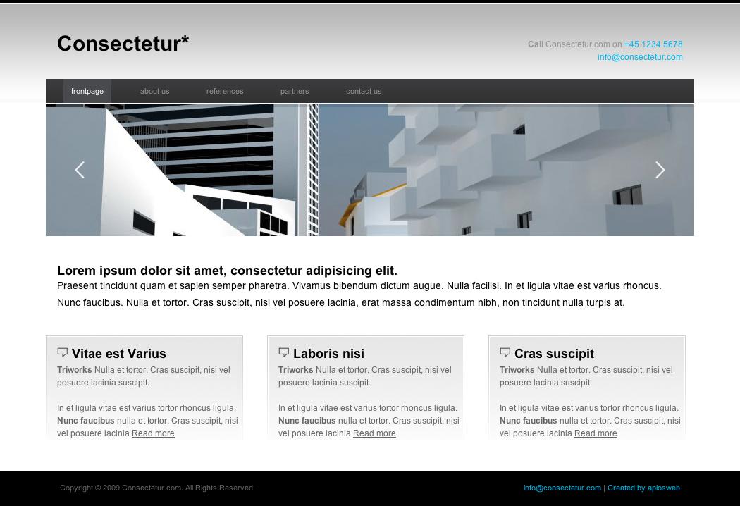 Consectetur Business & Portfolio Template
