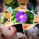Photos On The Wall - VideoHive Item for Sale