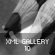 XML Gallery v10 - ActiveDen Item for Sale