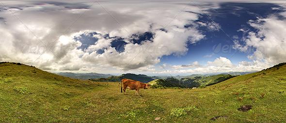 3DOcean HDRi Images Nature 238915