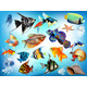 Marine animals  - GraphicRiver Item for Sale