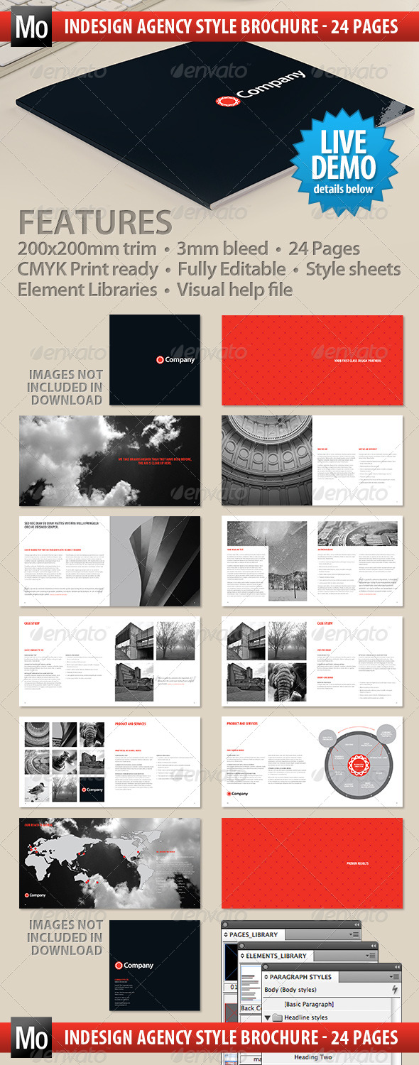 GraphicRiver Agency Brochure 24 page 238841