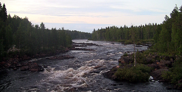 Rough River Flows Through The Forest