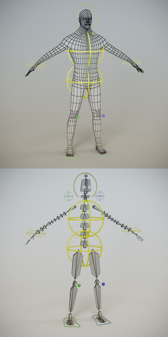 3DOcean Low Poly Male Mesh Human Rig 241911