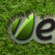 Logo On The Grass - VideoHive Item for Sale