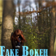 Fake Bokeh - GraphicRiver Item for Sale