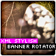 XML Stylish Banner Rotator - ActiveDen Item for Sale