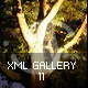 XML Gallery v11 - ActiveDen Item for Sale