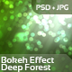 Bokeh Effect - Deep Forest - GraphicRiver Item for Sale
