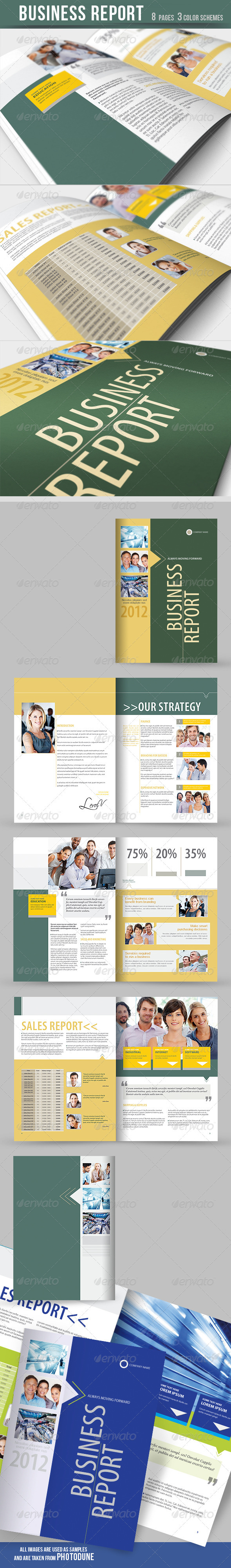 GraphicRiver Business Report Brochure 3 Color Schemes 2195306