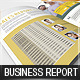 Business Report - Brochure - 3 Color Schemes - GraphicRiver Item for Sale