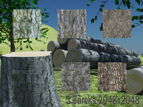 5 Barcks Texture - 3DOcean Item for Sale