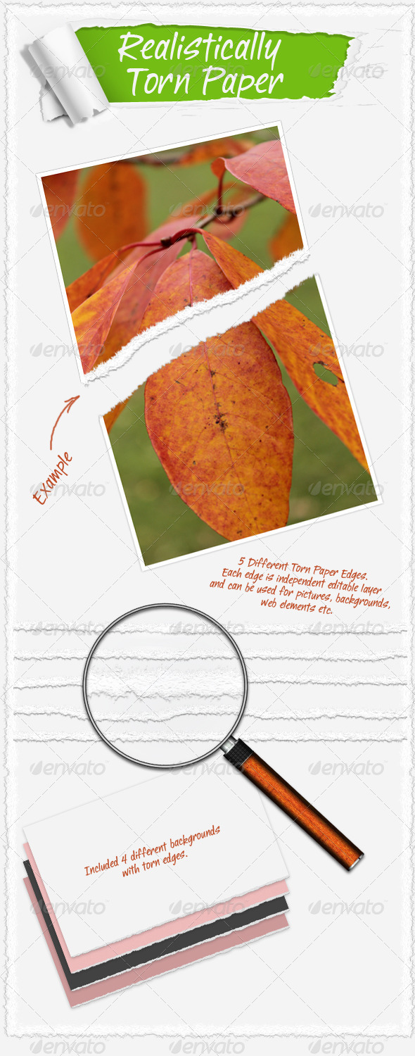 GraphicRiver Realistically Torn Paper 138919