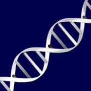 Spinning DNA - ActiveDen Item for Sale