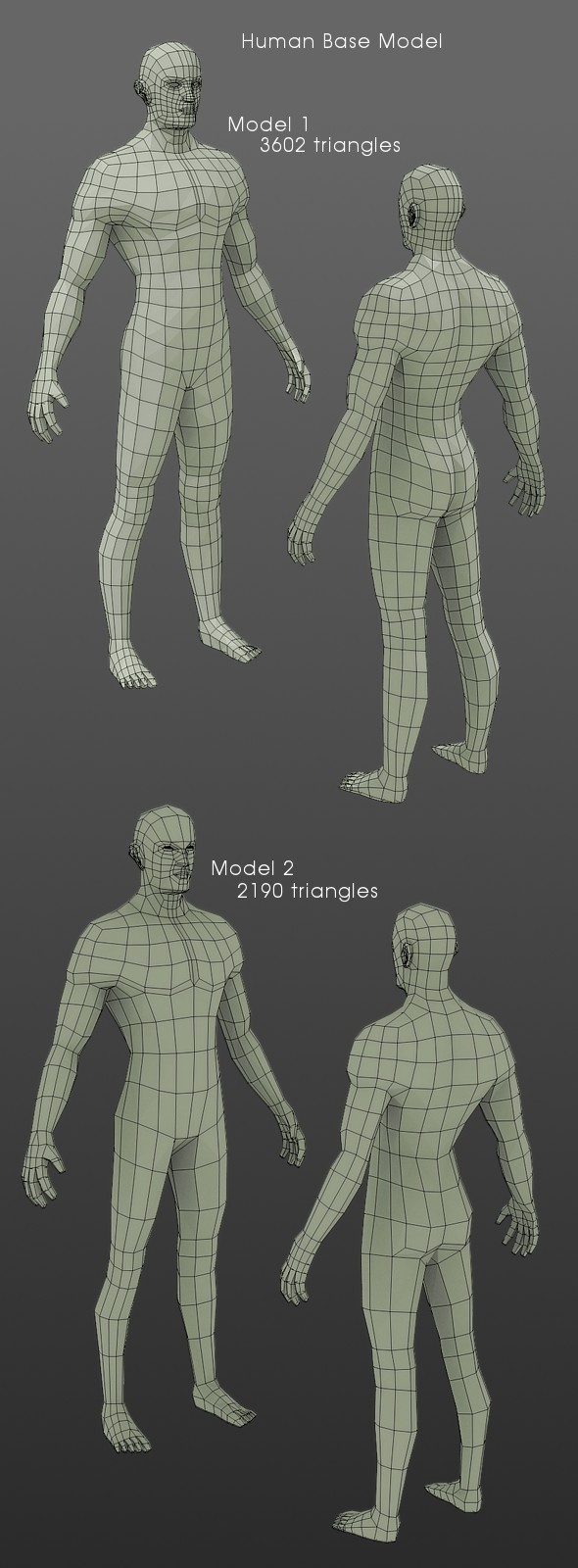 LowPolygon Human Base Model - 3DOcean Item for Sale