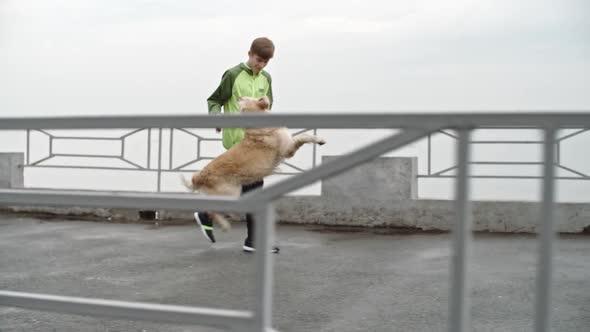 Download Teenage Boy Playing with Labrador Dog While Walking nulled download