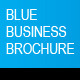 Blue Business Brochure A4 InDesign Template