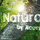 Naturama Photo Gallery - VideoHive Item for Sale
