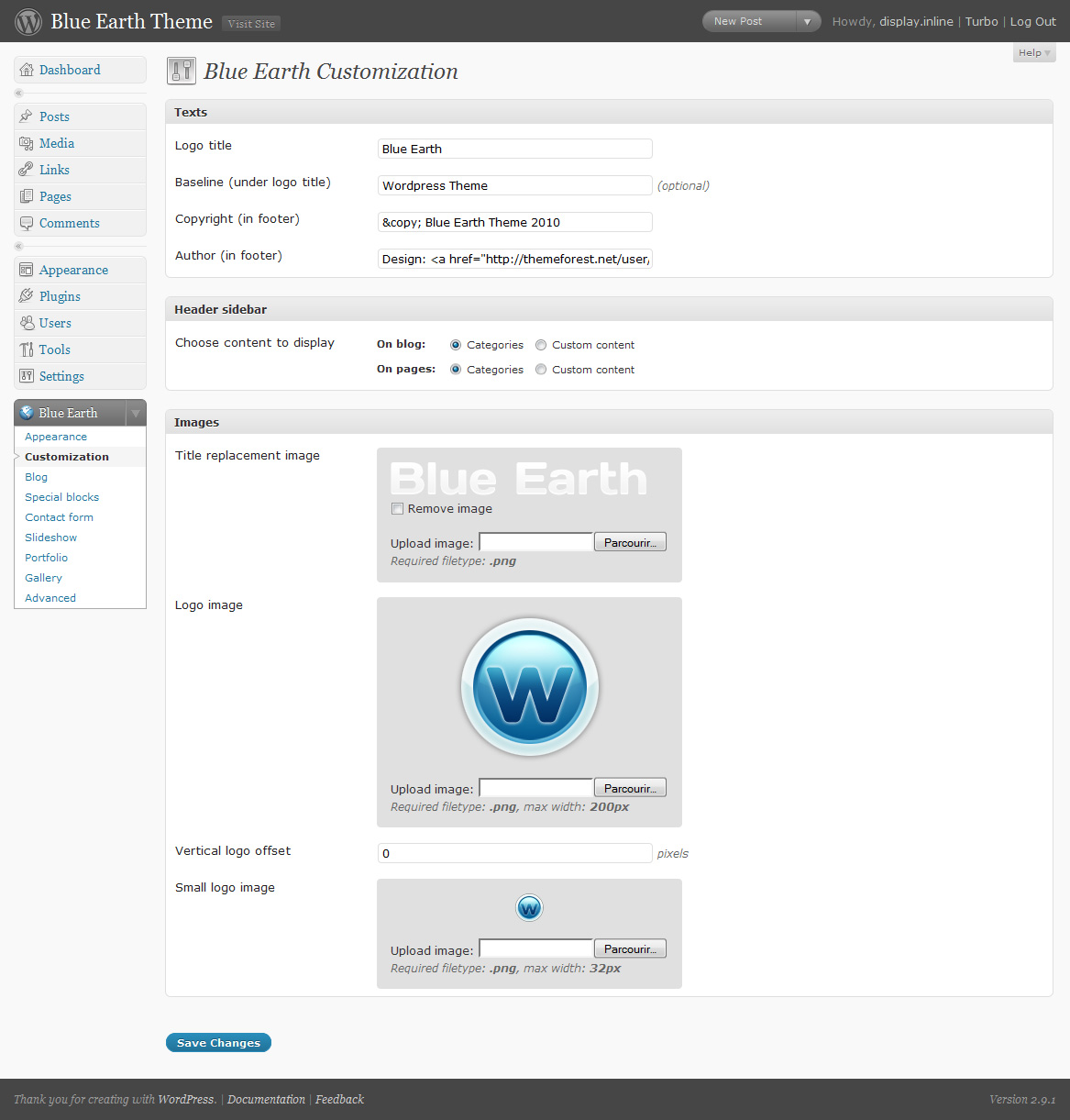 Blue Earth Wordpress theme - Customization admin panel