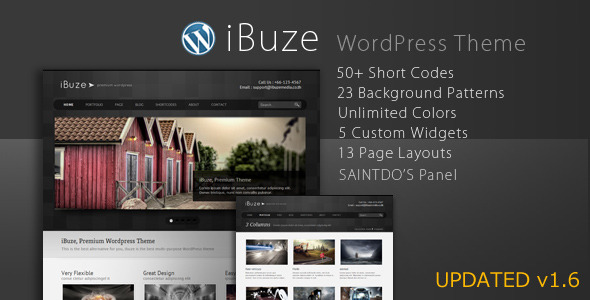 iBuze, Premium WordPress Theme
