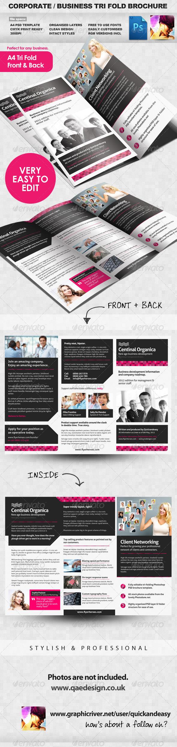 GraphicRiver Corporate Business Tri Fold Brochure 2278426
