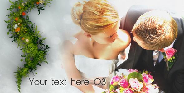 VideoHive New Life Wedding Album 2 2280475
