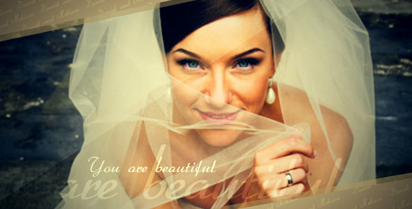 After Effects Project - VideoHive Wedding slideshow 2299429