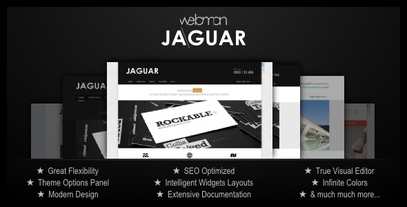 ThemeForest Jaguar Professional Portfolio Theme 2301033