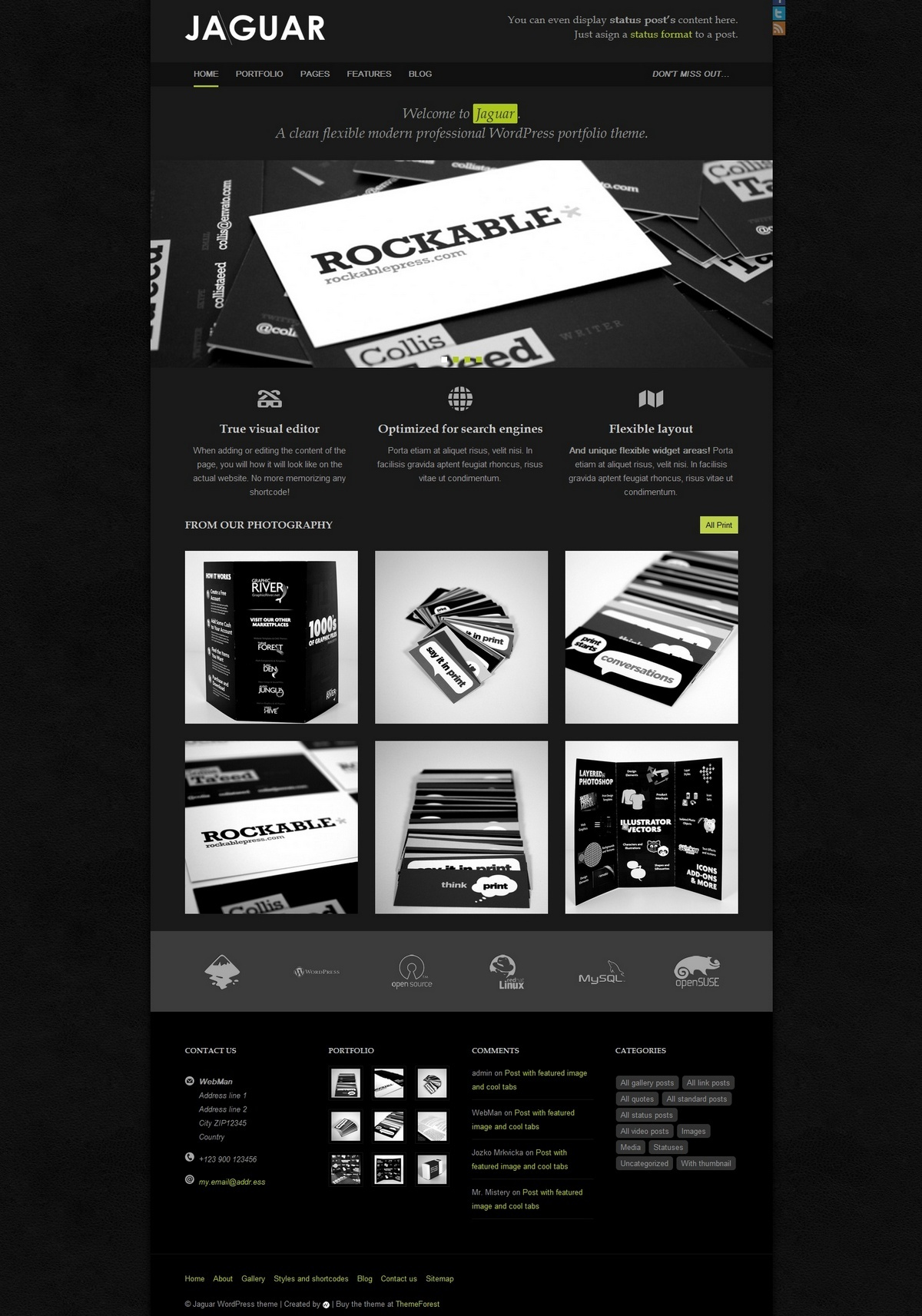 Jaguar - Professional Portfolio Theme - Jaguar Blackie color skin preview
