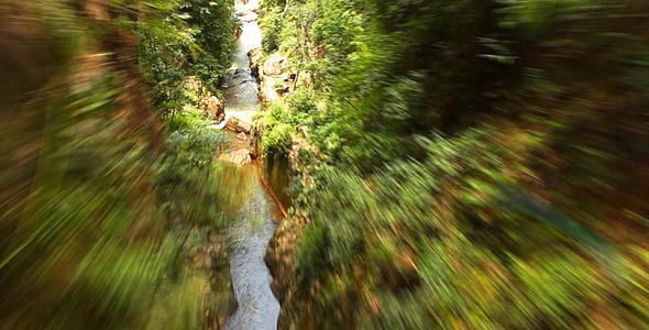 Fast Jungle Flight