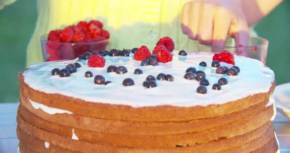 Download Cooking Fresh-Berry Cake with Kids nulled download