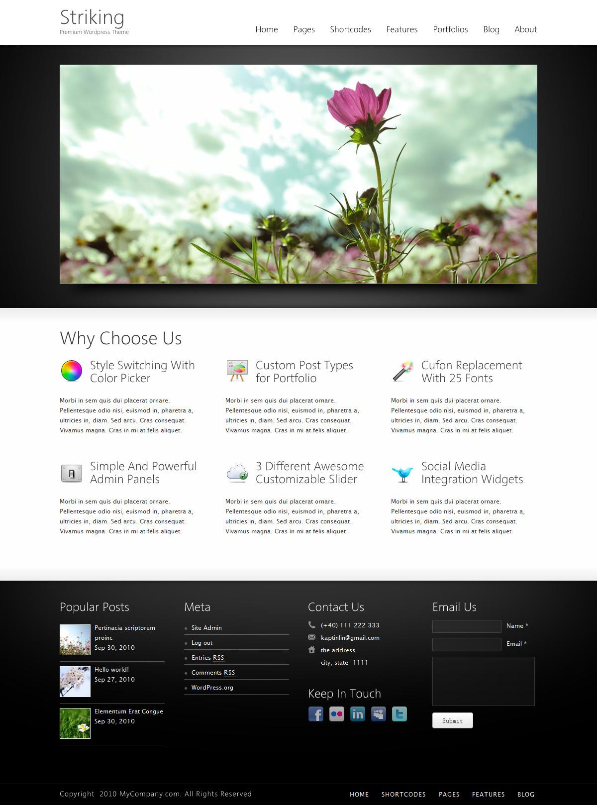 Striking Premium Corporate & Portfolio WP Theme - Homepage with nivo slider