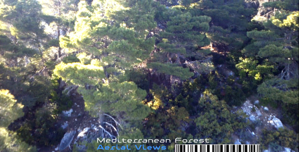 Mediterranean Forest Aerial Views