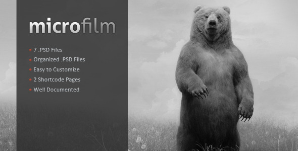 ThemeForest Microfilm Photography Sensation 2347313