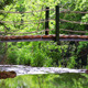 Wood Bridge On The Creek - VideoHive Item for Sale