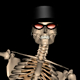 Skeleton Funny Dance III - VideoHive Item for Sale