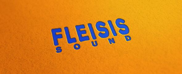 Fleisisound