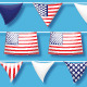 US Pennant Flag Brushes & Ready-Made Objects